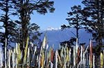 Bhutan;Bhutanese;Asia;Kingdom;beliefs;Buddhism;Buddhist;Buddhist;creed;Dochula;Dochula_Pass;faith;Himalayas;Phunaka_District;prayer_flags;religion