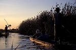 Africa;boats;man;men;male;person;people;mokoro;people;persons;transportation;vessels;Mokoro;dug_out;Okavango_Delta;sunset;North_West_District;Botswana;Botswanan