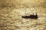 Brazil;Brazilian;Brasil;Latin_America;Fishing;boat;Amazon;River;Marajo_Bay;Marajo_Bay;Para;fisherman;fishermen;fishing_industry;jungle;tropical_rain_forest