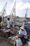 Brazil;Brazilian;Brasil;Latin_America;Belem_do_Para;dock;jungle;Market;Para;tropical_rain_forest;Ver_o_Peso;Fishmongers