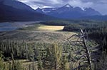 Canada;Canadian;North_America;Rocky_Mountains;Rockies;UNESCO;World_Heritage_Site;Banff;National_Park;Alberta;North_Saskatchewan_River