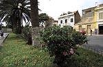 Cape_Verde;Capeverdean;Cabo_Verde;Africa;Atlantic;islands;Mindelo;Sao_Vicente;street;street_scene_