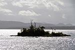 Chile;Chilean;South_America;Latin_America;Island;Southern_beech_trees;Estero_Elefantes;Aisen;Region;Patagonia;UNESCO;Biosphere_Reserve