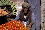 Egypt;Egyptian;Aswan;arid;bazaar;souk;markets;marketplaces;deserts;male;man;markets;marketplaces;vendors;sellers;merchants;salespersons;retailers;shopping;men;Middle_East;Near_East;Nile;North_Africa;people;Egyptians;Arabs;Arabic;person;persons;rivers;streams;Tomato;Tomato_vendor;vendor;water
