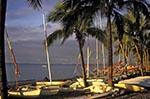 Fiji;Fijian;Melanesia;South_Pacific;Oceania;beach;islands;Nadi;recreations;Regent_Resort;sports;tropical;Western_Province;Windsurfers