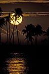 Fiji;Fijian;Melanesia;South_Pacific;Oceania;islands;Nadi;Regent_Resort;Sunset;tropical;Western_Province;South_Pacific