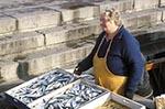 Europe;female;Finland;Finnish;Fish;fisherman;fishermen;fishing_industry;Helsinki;Kauppatori;Market_Square;marketplaces;markets;merchants;monger;people;Finns;person;persons;retailers;salespersons;sellers;shopping;Suomi;vendors;woman;women