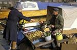 aged;elderly;Europe;female;Finland;Finnish;Helsinki;Kauppatori;male;man;Market_Square;marketplaces;markets;mature;men;merchants;older;people;Finns;person;persons;Potato;retailers;salespersons;sellers;seniors;shopping;Suomi;vendor;vendors;woman;women