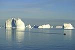 Greenland;Kalaallit_Nunaat;Arctic;Denmark;glacial;Greenlandic;Hall_Bredning;ice;Iceberg;Inuit;islands;landscapes;North_America;polar;scenery;scenic