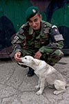 Kosovo;Balkans;Europe;dogs;domestic_animals;fauna;mammals;_Kosovar;man;men;male;person;people;Slovaks;military;armed_forces;martial;Gazimestan;Slovak;soldier;dog