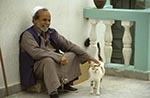 Libya;Libyan;Africa;aged;arid;barren;cats;deserts;domestic_animals;elderly;fauna;felines;female;male;mammals;man;mature;men;older;people;Libyans;person;persons;people;Libyans;seniors;woman;women;Darna;Old;man;cat
