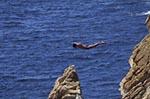 Mexico;Mexican;Latin_America;North_America;Central_America;Acapulco;Cliff;coasts;diver;Guerrero;La_Quebrada;male;man;men;people;Mexicans;person;persons;seashores;seaside;tide;beaches