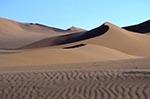 Acacia_erioloba;Africa;arid;barren;Camel_Thorn;deserts;dunes;Hardap;Namib_Sand_Sea;Namib_Naukluft_Park;Namibia;Namibian;sand;Sossusvlei;tree;UNESCO;World_Heritage_Site