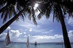 beaches;boats;vessels;transportation;coasts;island;seashores;seaside;tropical;Boracay;Aklan;Vintas;Palm;trees;White_Beach;Philippines;Philippine;Filipino;Asia;Southeast_Asia
