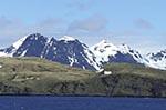 South_Georgia;Antarctic;Antarctica;sub_Antarctic;Albatross_Island;ecosystem;environment;landscapes;polar;scenery;scenic
