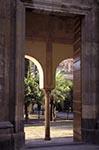 Andalucía;Architecture;Art;Art_history;Courtyard;Córdoba;España;Historic_Centre_of_Córdoba;Islamic;Mediterranean;Mezquita_de_Córdoba;Mosque;mosque;Muslim;Orange;Patio_de_los_Naranjos;Trees;UNESCO;World_Heritage_Site;Andalusia;España;Spain;Spanish;Europe;European