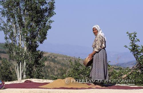 Turkey;Turkish;Asia;Europe;female;people;Turks;person;persons;people;Turks;woman;women;Nemrut Dag;Adiyaman;Kurdish;woman;sifting;roof