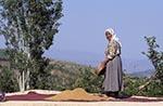 Turkey;Turkish;Asia;Europe;female;people;Turks;person;persons;people;Turks;woman;women;Nemrut_Dag;Adiyaman;Kurdish;woman;sifting;roof