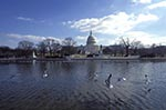 Americans;Architecture;Art;Art_history;Federal_architecture;Neoclassical;North_America;USA;United_States_of_America;USA;Washington;DC;District_of_Columbia;United_States;Reflecting_pond;United_States_Capitol;Capitol