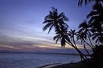 Vietnam;Vietnamese;Asia;Indochina;Southeast_Asia;Phan_Thiet;Binh_Thuan;Palm;trees;Mui_Na;Beach;dusk