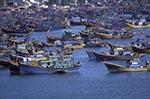 Vietnam;Vietnamese;Asia;Indochina;Southeast_Asia;boats;fisherman;fishermen;fishing_industry;transportation;vessels;Phan_Thiet;Binh_Thuan;Fishing;boats;Mui_Na